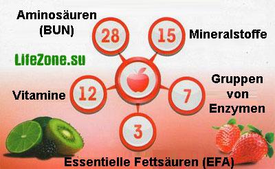 Das ist Code der Zelle: Aminosäuren Mineralstoffe Vitamine Gruppen von Enzymen Essentielle Fettsäuren